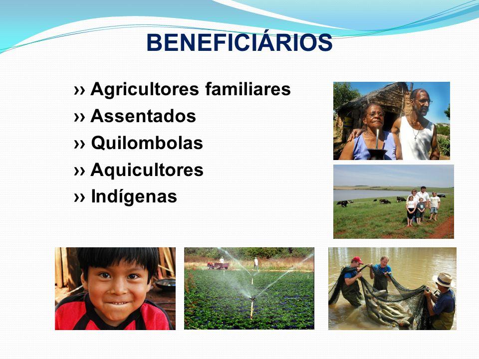 BENEFICIÁRIOS Agricultores familiares Assentados Quilombolas Aquicultores Indígenas