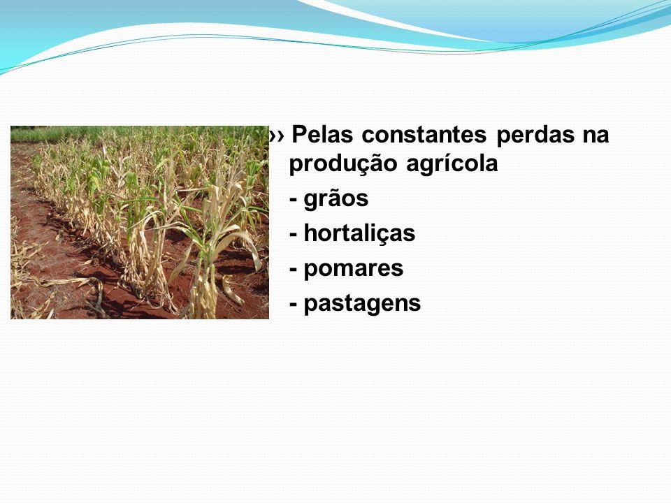 Pelas constantes perdas na produção agrícola - grãos - hortaliças - pomares - pastagens