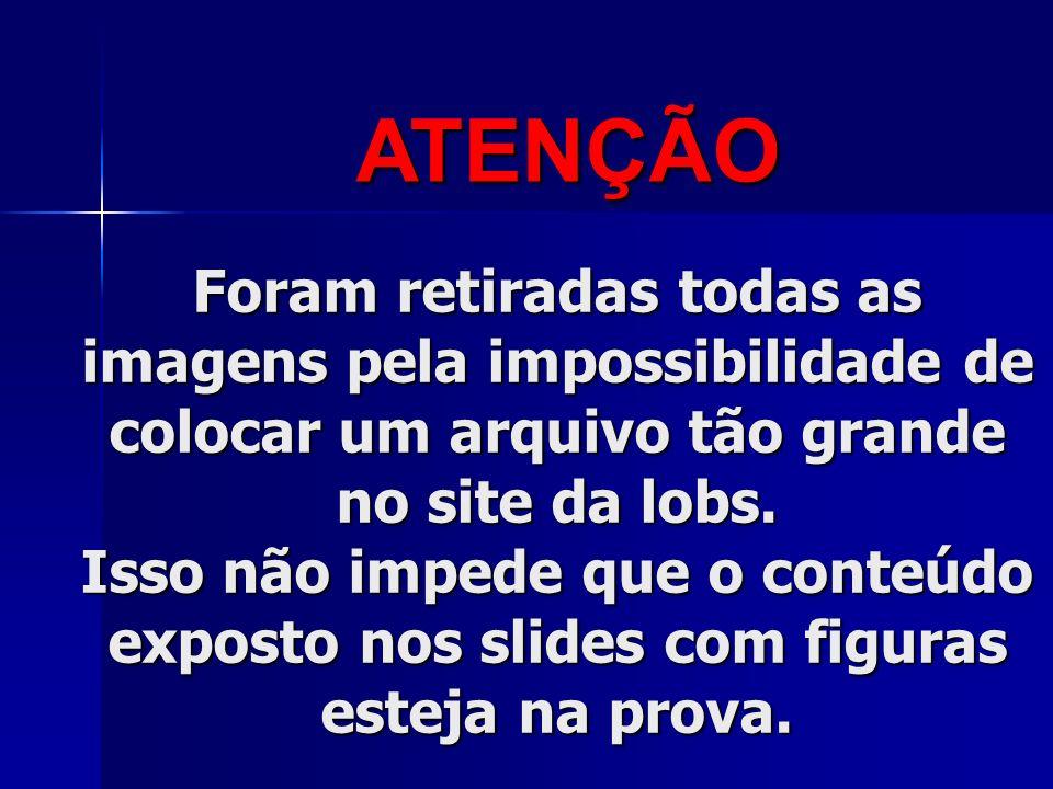 DIAGNÓSTICO DE GRAVIDEZ Vardeli Alves de Moraes Prof.