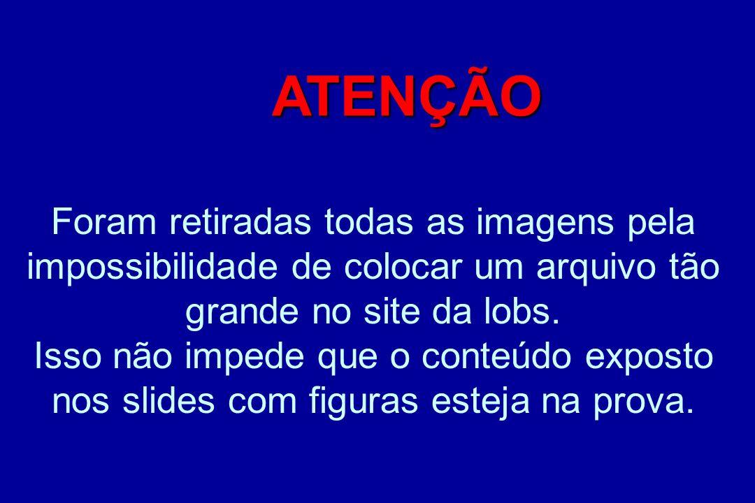 Mirian Socorro Cardoso Seixas Prof.Assistente Dpto.