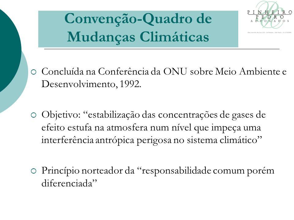 Concluída na Conferência da ONU sobre Meio Ambiente e Desenvolvimento, 1992.