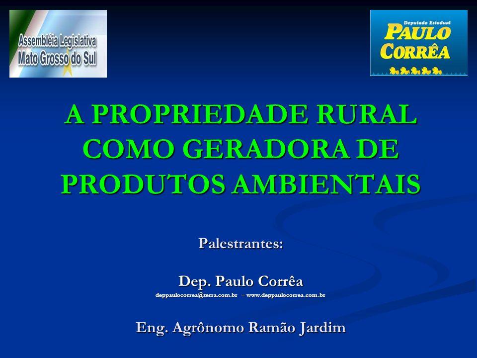 A PROPRIEDADE RURAL COMO GERADORA DE PRODUTOS AMBIENTAIS Palestrantes: Dep.