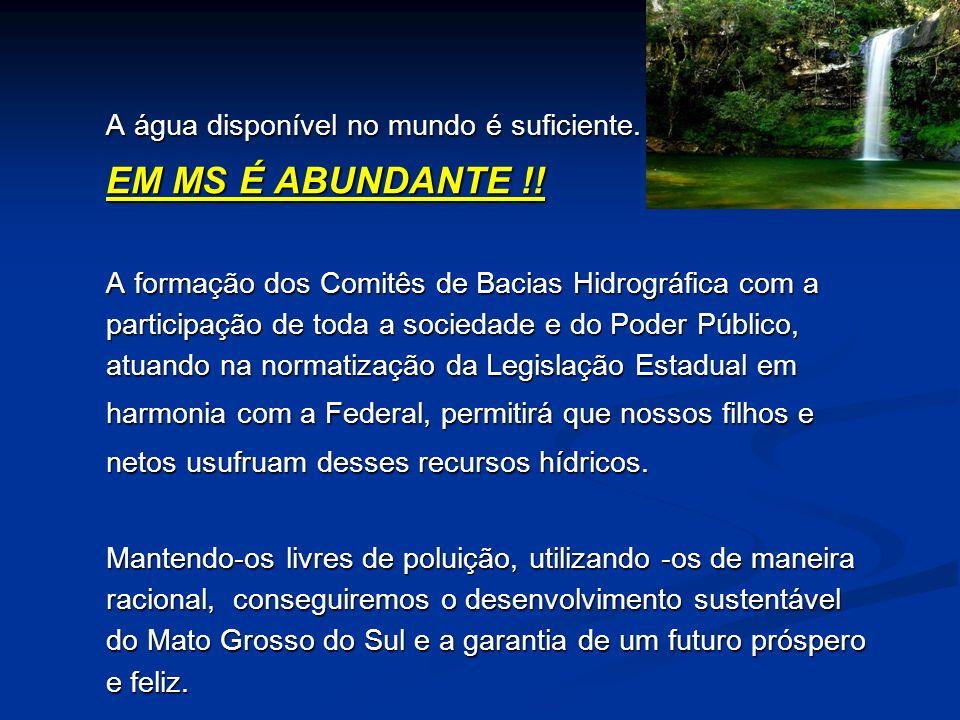 Produtor de Água - Exemplo Eficiência do Abatimento de Erosão IndicadorFaixa E.E.