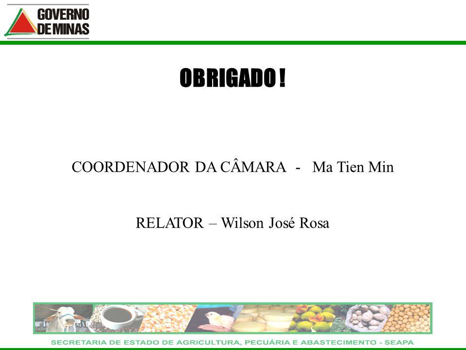 OBRIGADO ! COORDENADOR DA CÂMARA - Ma Tien Min RELATOR – Wilson José Rosa