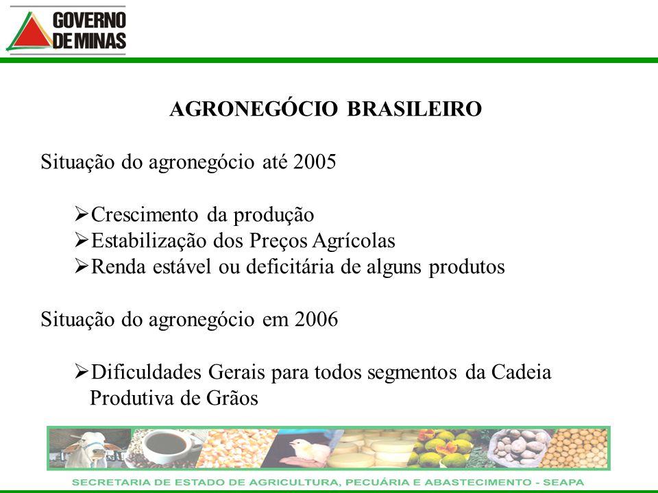 AGRONEGÓCIO BRASILEIRO Situação do agronegócio até 2005 Crescimento da produção Estabilização dos Preços Agrícolas Renda estável ou deficitária de alg