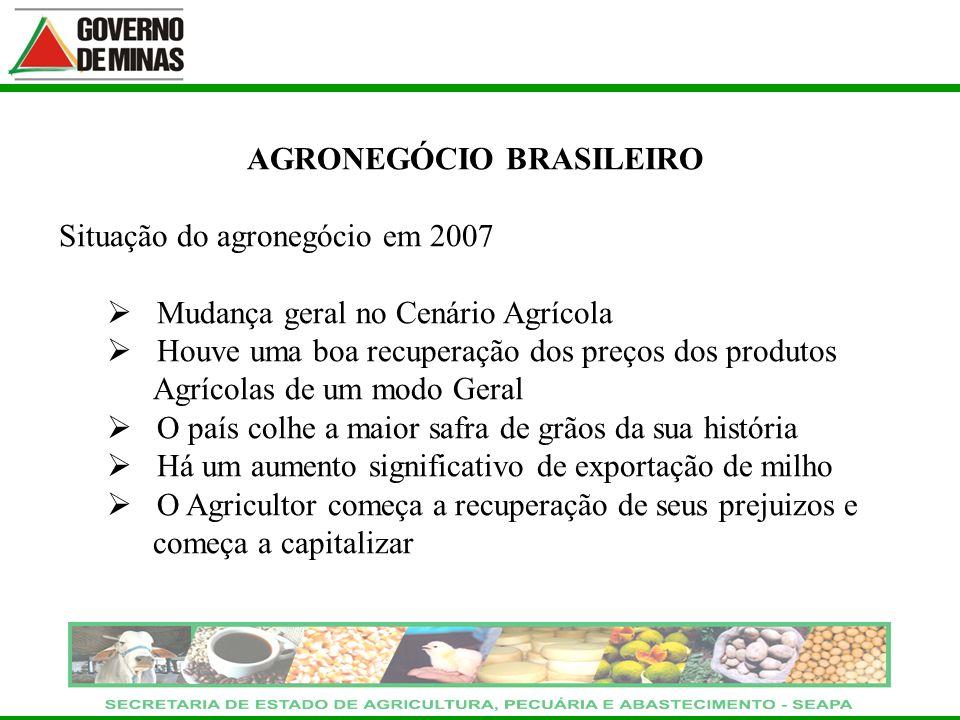 AGRONEGÓCIO BRASILEIRO Situação do agronegócio em 2007 Mudança geral no Cenário Agrícola Houve uma boa recuperação dos preços dos produtos Agrícolas d