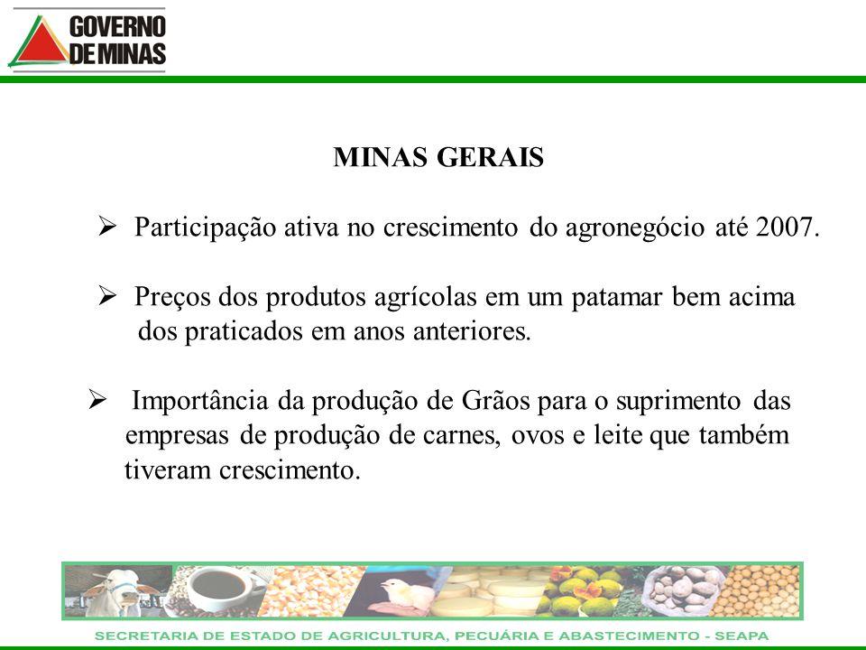 MINAS GERAIS Participação ativa no crescimento do agronegócio até 2007. Preços dos produtos agrícolas em um patamar bem acima dos praticados em anos a