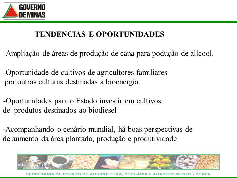 TENDENCIAS E OPORTUNIDADES -Ampliação de áreas de produção de cana para podução de allcool. -Oportunidade de cultivos de agricultores familiares por o