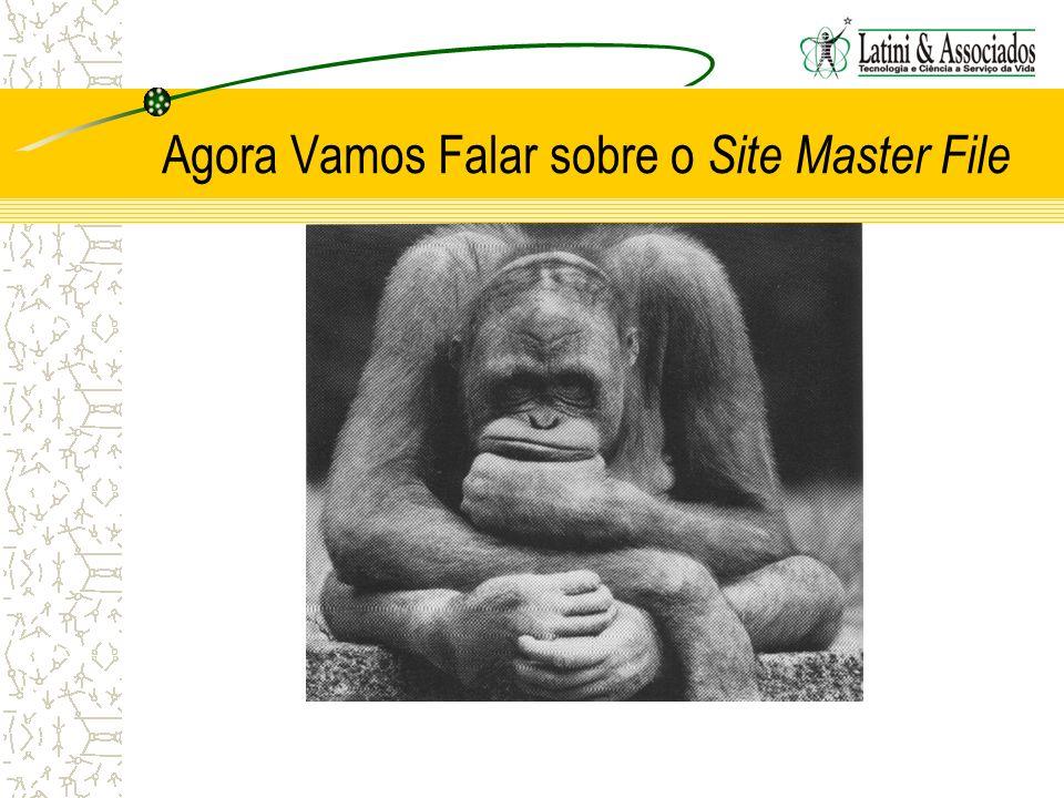 Agora Vamos Falar sobre o Site Master File