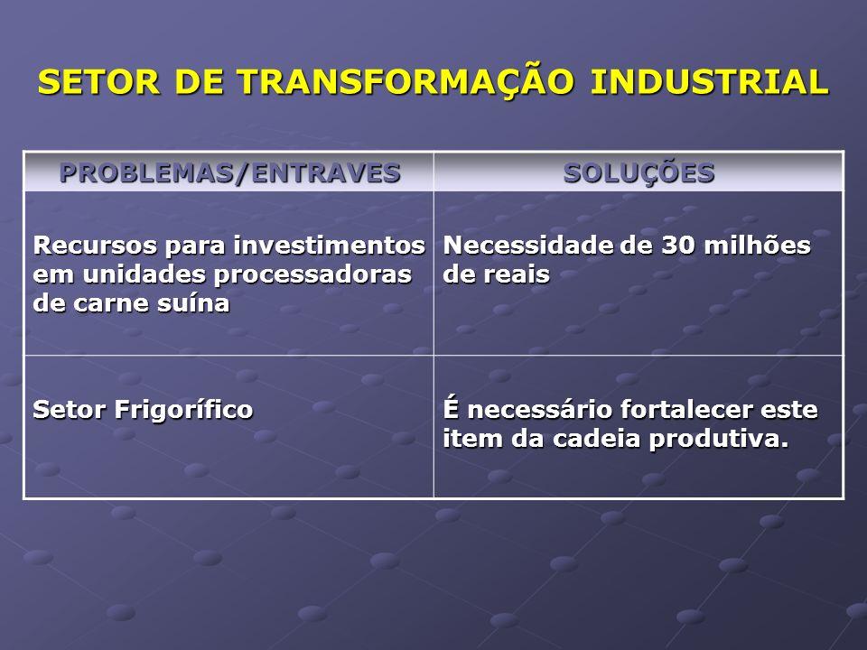 SETOR COMERCIAL PROBLEMAS / ENTRAVES SOLUÇÕES Ações de Marketing para aumento do consumo Parceria entre ABCS, AMIS, ASEMG e Indústrias Frigoríficas.