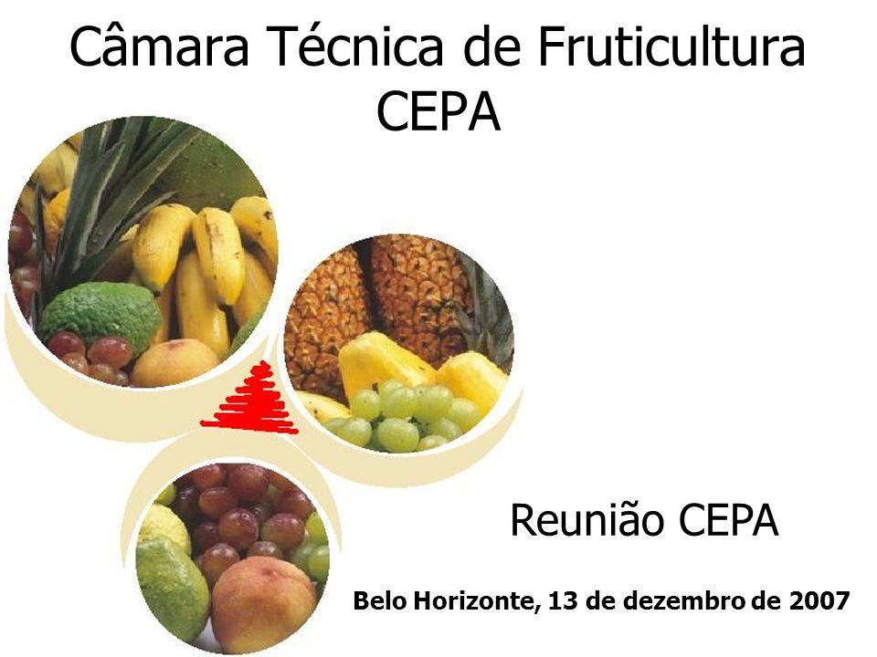 Câmara Técnica de Fruticultura CEPA Reunião CEPA Belo Horizonte, 13 de dezembro de 2007