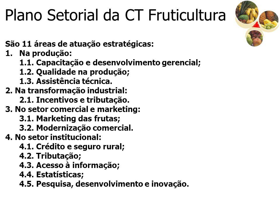 Plano Setorial da CT Fruticultura São 11 áreas de atuação estratégicas: 1.Na produção: 1.1. Capacitação e desenvolvimento gerencial; 1.2. Qualidade na
