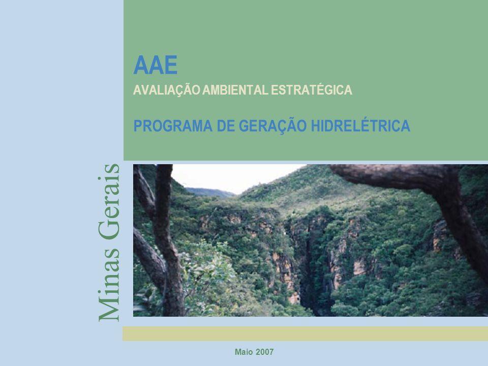 AAE AVALIAÇÃO AMBIENTAL ESTRATÉGICA PROGRAMA DE GERAÇÃO HIDRELÉTRICA Minas Gerais Maio 2007