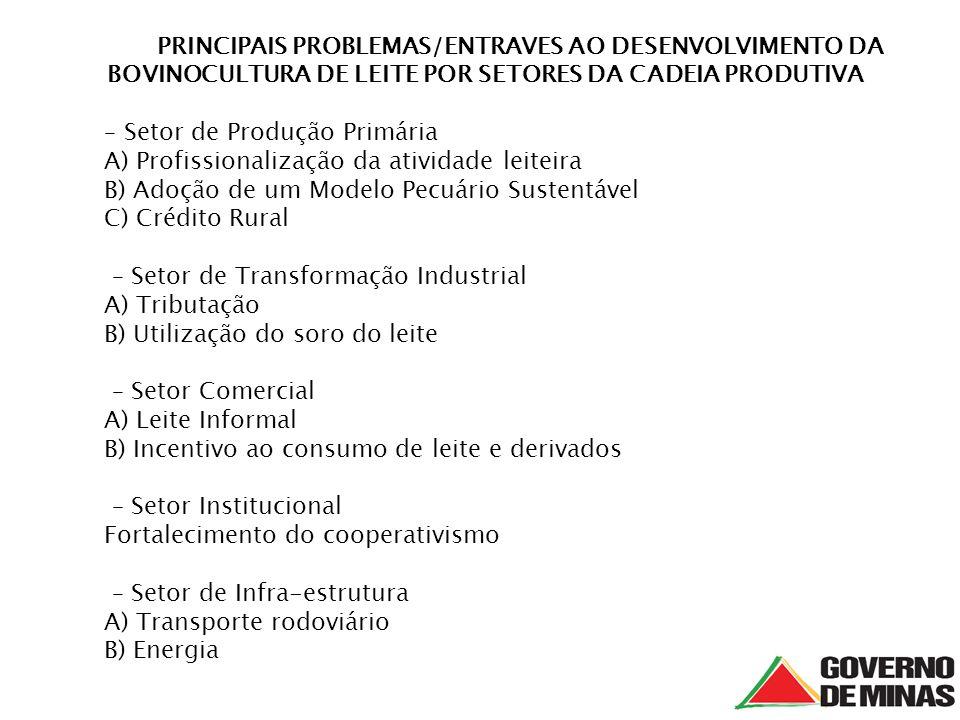 PRINCIPAIS PROBLEMAS/ENTRAVES AO DESENVOLVIMENTO DA BOVINOCULTURA DE LEITE POR SETORES DA CADEIA PRODUTIVA – Setor de Produção Primária A) Profissiona