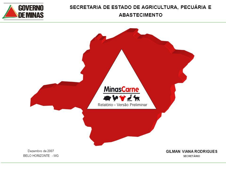 SECRETARIA DE ESTADO DE AGRICULTURA, PECUÁRIA E ABASTECIMENTO GILMAN VIANA RODRIGUES SECRETÁRIO Dezembro de 2007 BELO HORIZONTE - MG Relatório – Versã