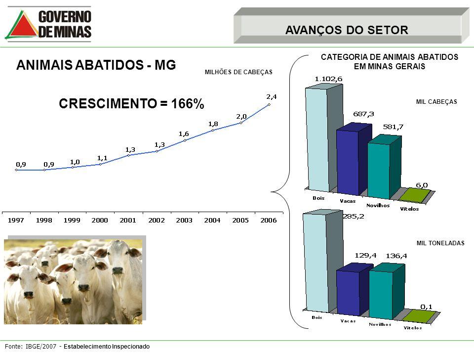 Fonte: IBGE/2007 - Estabelecimento Inspecionado AVANÇOS DO SETOR ANIMAIS ABATIDOS - MG MILHÕES DE CABEÇAS CATEGORIA DE ANIMAIS ABATIDOS EM MINAS GERAI
