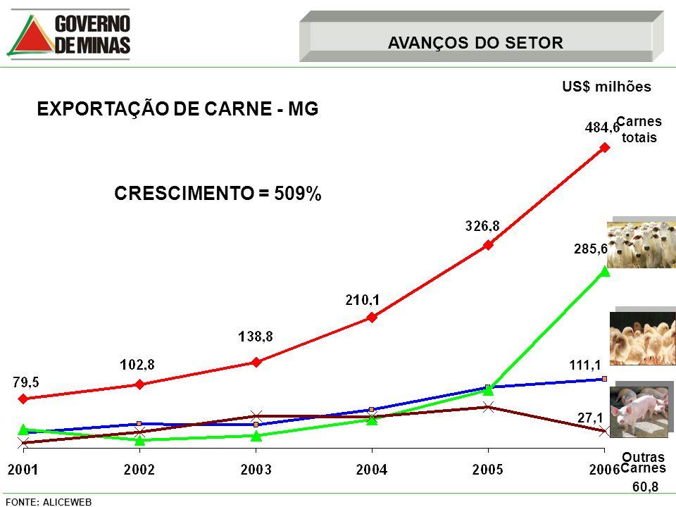 FONTE: ALICEWEB US$ milhões 285,6 111,1 27,1 Carnes totais Outras Carnes 60,8 CRESCIMENTO = 509% AVANÇOS DO SETOR EXPORTAÇÃO DE CARNE - MG