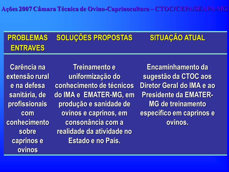 PROBLEMAS ENTRAVES SOLUÇÕES PROPOSTAS SITUAÇÃO ATUAL Carência na extensão rural e na defesa sanitária, de profissionais com conhecimento sobre caprino