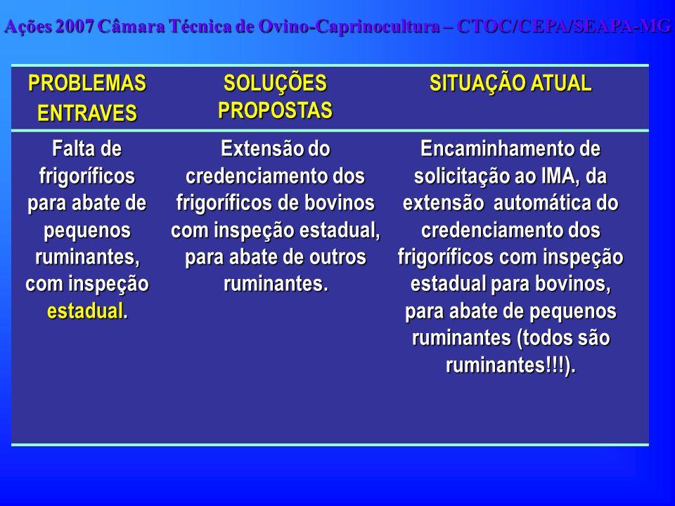PROBLEMAS ENTRAVES SOLUÇÕES PROPOSTAS SITUAÇÃO ATUAL Falta de frigoríficos para abate de pequenos ruminantes, com inspeção estadual. Extensão do crede