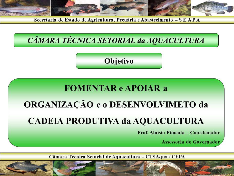 2007 até 2010 Aumentar a produção aqüícola para 1,0kg/hab/ano (8.000 para 23.000t); Obs.: 8.000t é a quantidade controlada pelo IBAMA em 2002.