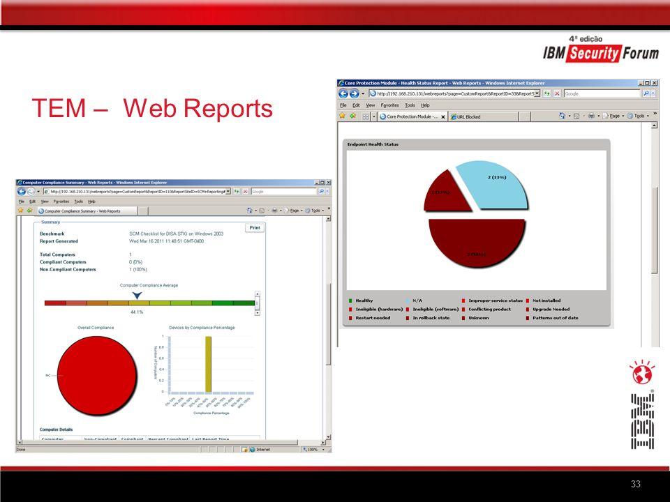 33 TEM – Web Reports