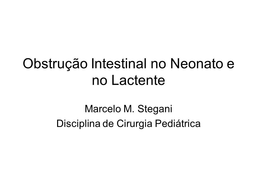 Obstrução Intestinal no Neonato e no Lactente Marcelo M. Stegani Disciplina de Cirurgia Pediátrica