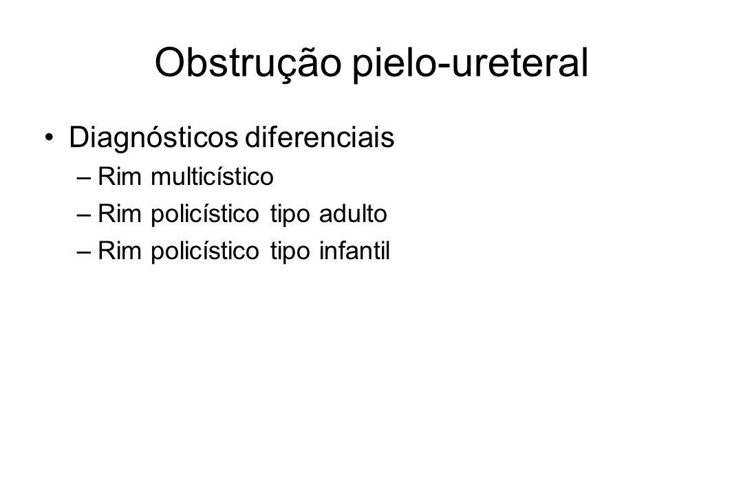 Obstrução pielo-ureteral Diagnósticos diferenciais –Rim multicístico –Rim policístico tipo adulto –Rim policístico tipo infantil