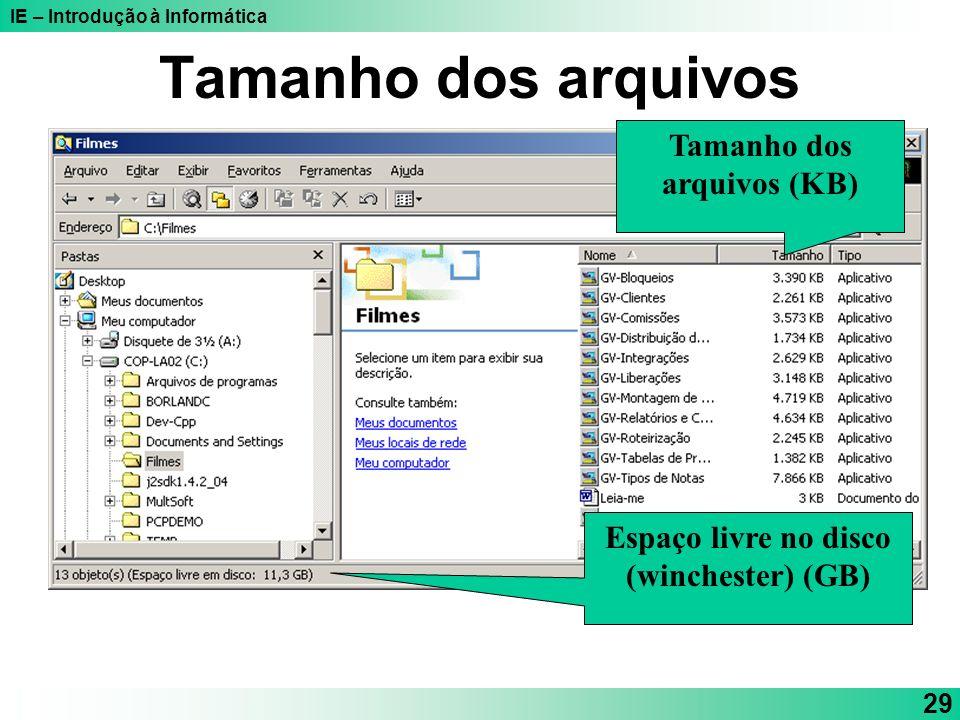 IE – Introdução à Informática 29 Tamanho dos arquivos Tamanho dos arquivos (KB) Espaço livre no disco (winchester) (GB)
