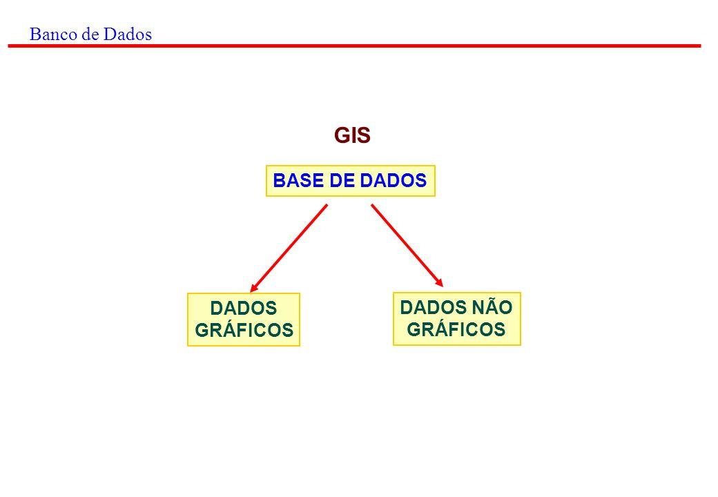 Banco de Dados DADOS GRÁFICOS: PONTOS LINHAS POLÍGONOS ANOTAÇÕES São descrições digitais das feições dos mapas, envolvendo coordenadas, regras, símbolos que definem os elementos cartográficos.