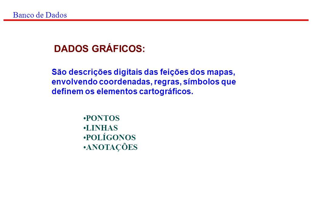 Banco de Dados DADOS NÃO GRÁFICOS: ATRIBUTOS NÃO GRÁFICOS DADOS REFERENCIADOS GEOGRAFICAMENTE ÍNDICES GEOGRÁFICOS RELACIONAMENTOS ESPACIAIS São armazenados em formato alfanumérico e representam características, qualidades ou relacionamentos entre enti- dades presentes no mapa.