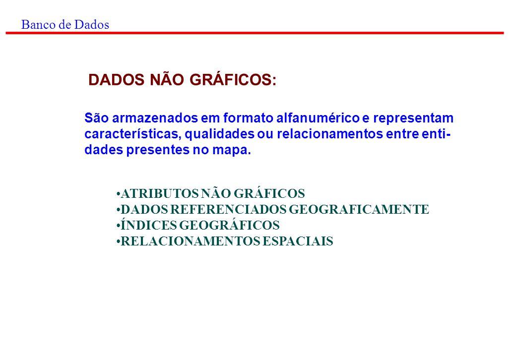 Banco de Dados MODELOS OPERACIONAIS: MODELO HIERÁRQUICO MODELO EM REDE MODELO RELACIONAL Explora as propriedades das relações.