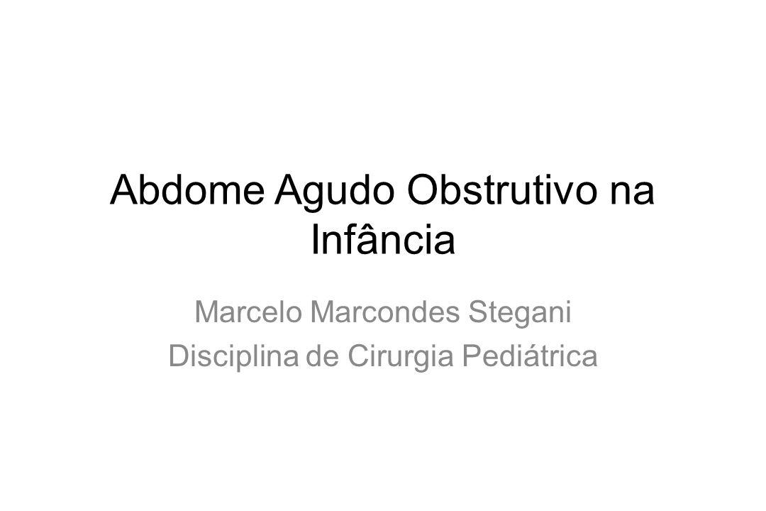 Abdome Agudo Obstrutivo na Infância Marcelo Marcondes Stegani Disciplina de Cirurgia Pediátrica