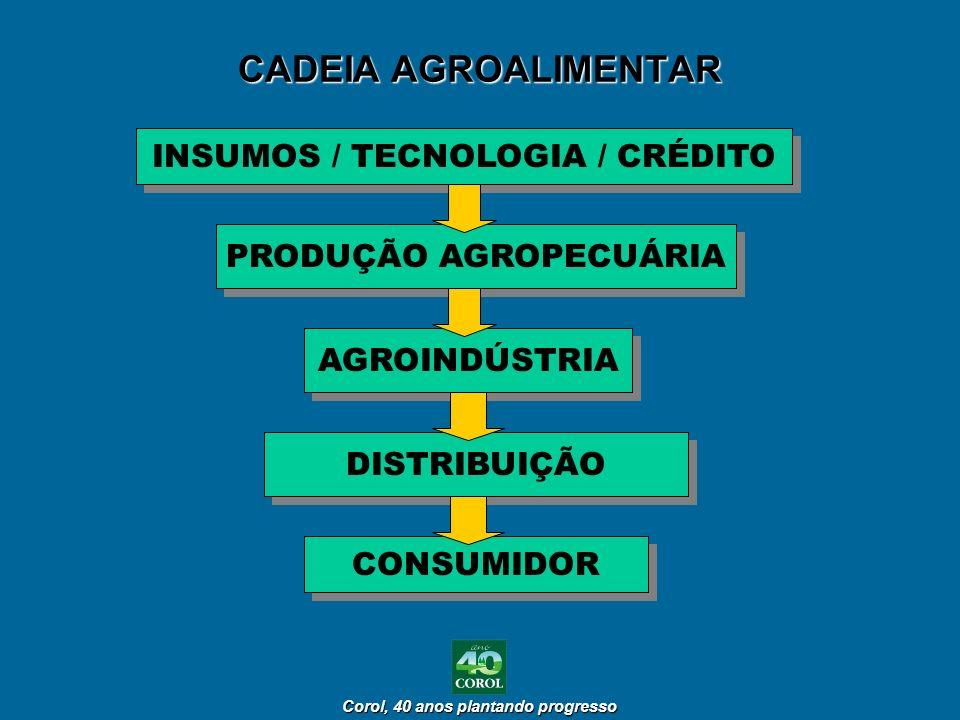 Corol, 40 anos plantando progresso Corol, 40 anos plantando progresso CADEIA AGROALIMENTAR INSUMOS / TECNOLOGIA / CRÉDITO PRODUÇÃO AGROPECUÁRIA AGROIN
