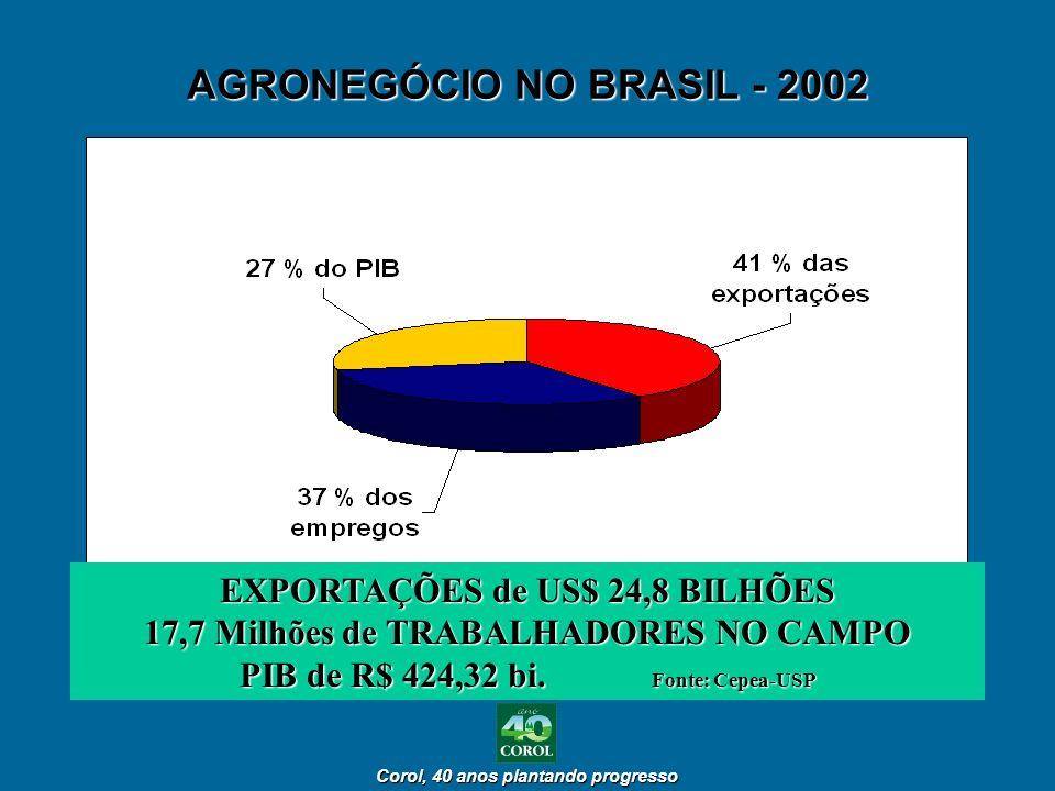 AGRONEGÓCIO NO BRASIL - 2002 EXPORTAÇÕES de US$ 24,8 BILHÕES 17,7 Milhões de TRABALHADORES NO CAMPO PIB de R$ 424,32 bi. Fonte: Cepea-USP