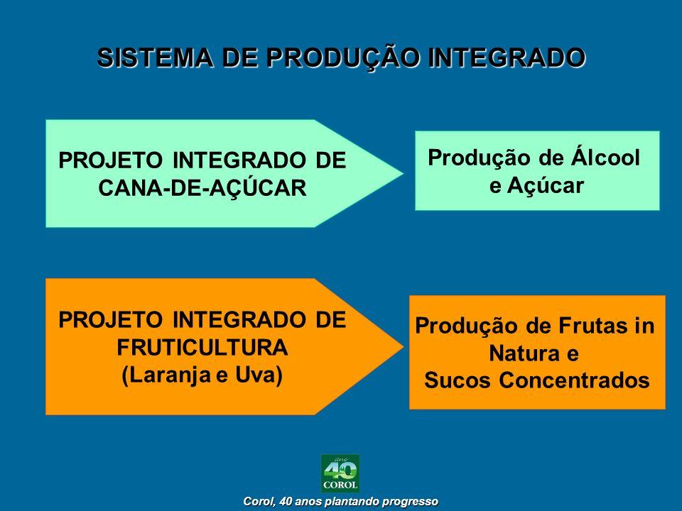 Corol, 40 anos plantando progresso Corol, 40 anos plantando progresso SISTEMA DE PRODUÇÃO INTEGRADO PROJETO INTEGRADO DE CANA-DE-AÇÚCAR PROJETO INTEGR