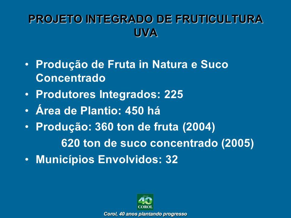 Corol, 40 anos plantando progresso Corol, 40 anos plantando progresso PROJETO INTEGRADO DE FRUTICULTURA UVA Produção de Fruta in Natura e Suco Concent