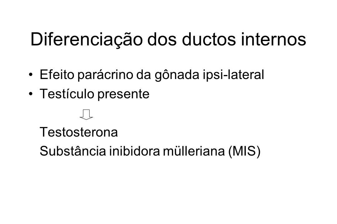 Diferenciação dos ductos internos Efeito parácrino da gônada ipsi-lateral Testículo presente Testosterona Substância inibidora mülleriana (MIS)