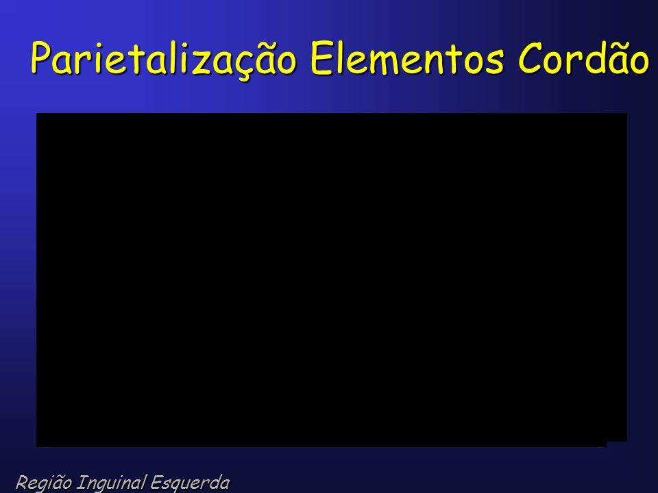 Parietalização Elementos Cordão Região Inguinal Esquerda
