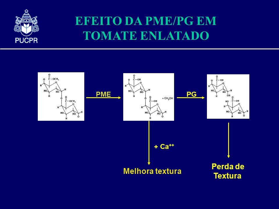pectin PME + Ca ++ Melhora textura PG Perda de Textura EFEITO DA PME/PG EM TOMATE ENLATADO