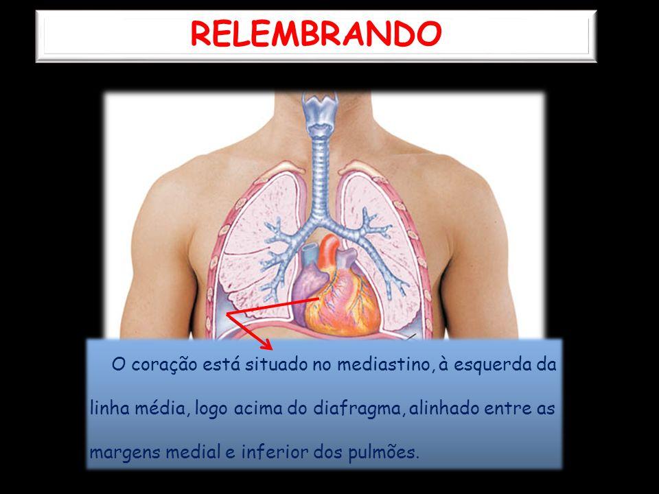 RELEMBRANDO O coração está situado no mediastino, à esquerda da linha média, logo acima do diafragma, alinhado entre as margens medial e inferior dos