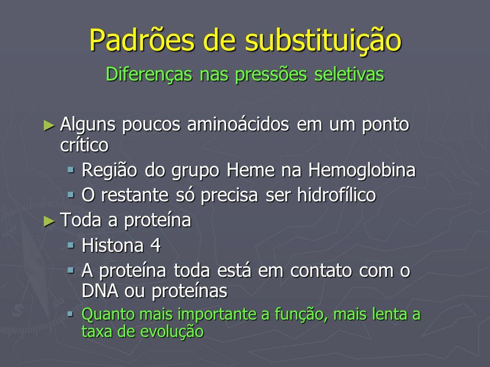 Padrões de substituição Diferenças nas pressões seletivas Alguns poucos aminoácidos em um ponto crítico Alguns poucos aminoácidos em um ponto crítico