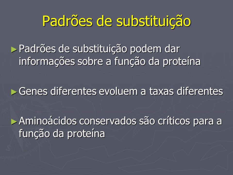 Padrões de substituição Padrões de substituição podem dar informações sobre a função da proteína Padrões de substituição podem dar informações sobre a