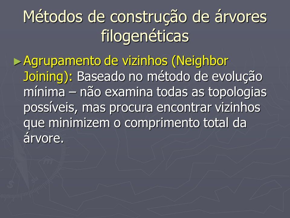 Métodos de construção de árvores filogenéticas Agrupamento de vizinhos (Neighbor Joining): Baseado no método de evolução mínima – não examina todas as
