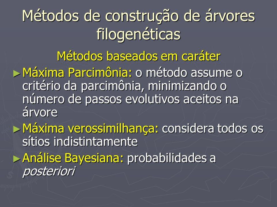 Métodos de construção de árvores filogenéticas Métodos baseados em caráter Máxima Parcimônia: o método assume o critério da parcimônia, minimizando o