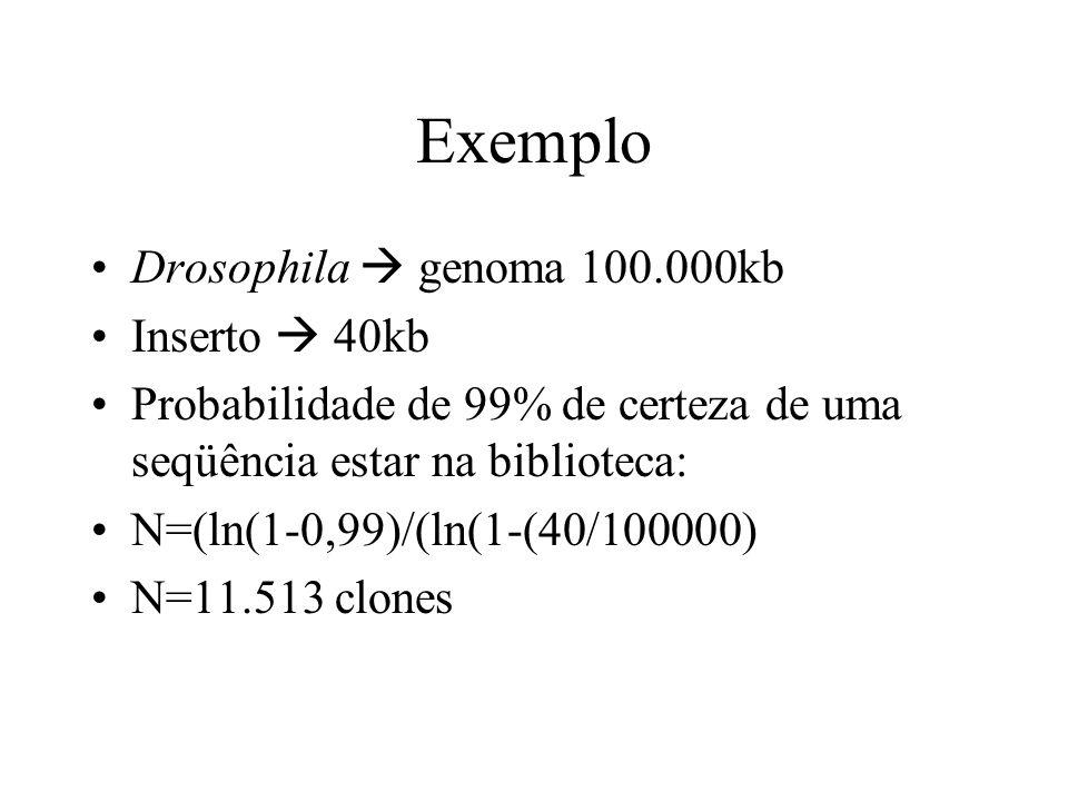 Exemplo Drosophila genoma 100.000kb Inserto 40kb Probabilidade de 99% de certeza de uma seqüência estar na biblioteca: N=(ln(1-0,99)/(ln(1-(40/100000)
