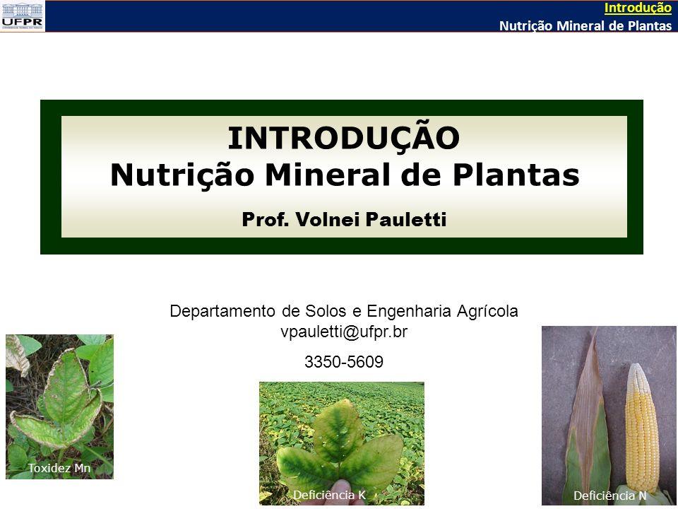 INTRODUÇÃO Nutrição Mineral de Plantas Prof.