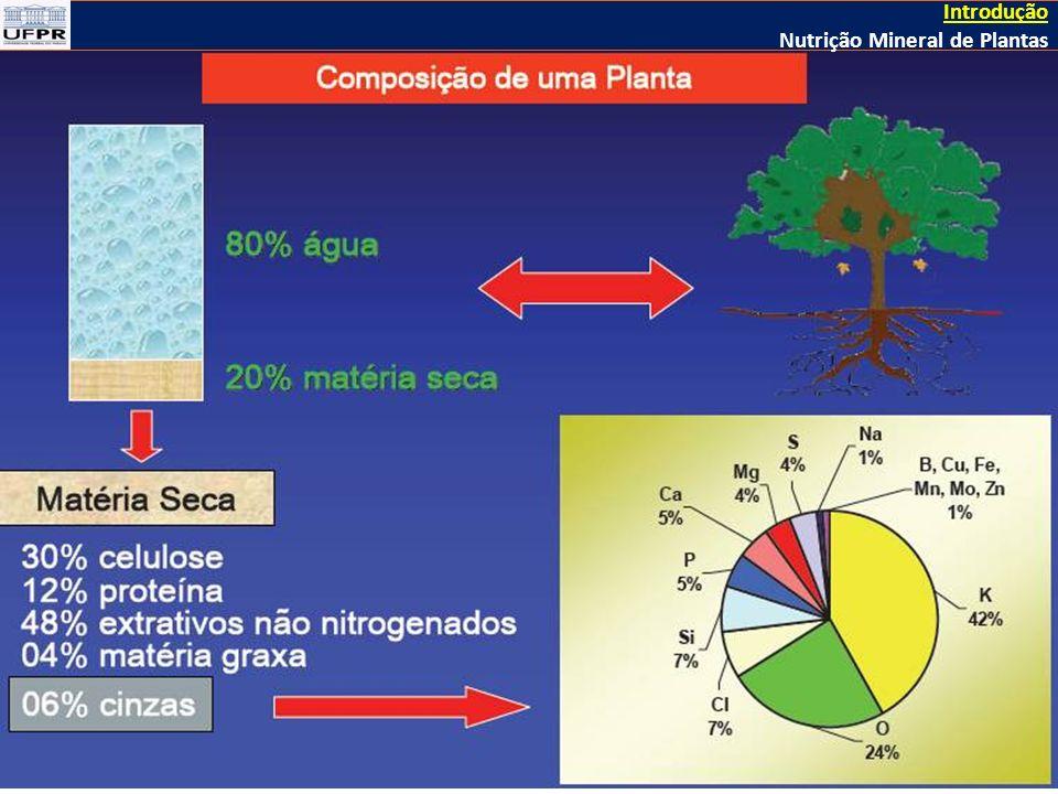 Introdução Nutrição Mineral de Plantas