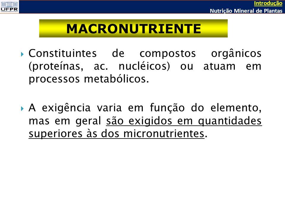 Constituintes de compostos orgânicos (proteínas, ac.