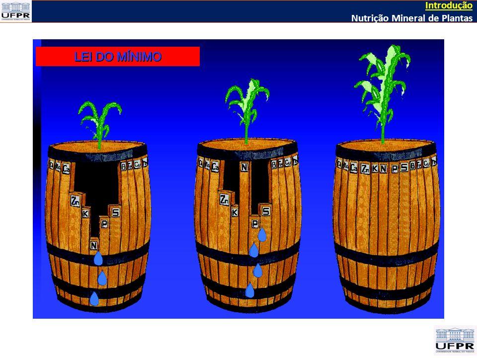 Introdução Nutrição Mineral de Plantas > 1900 Kirkby, 2012 HISTÓRIA DA NUTRIÇÃO MINERAL DE PLANTAS