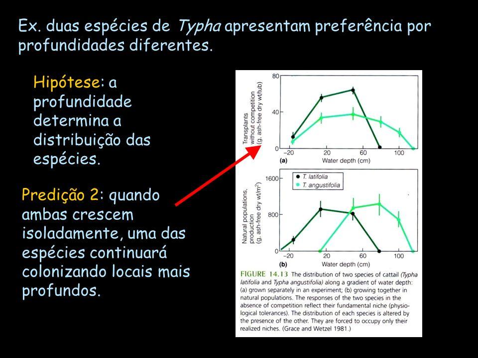 Ex. duas espécies de Typha apresentam preferência por profundidades diferentes. Hipótese: a profundidade determina a distribuição das espécies. Prediç